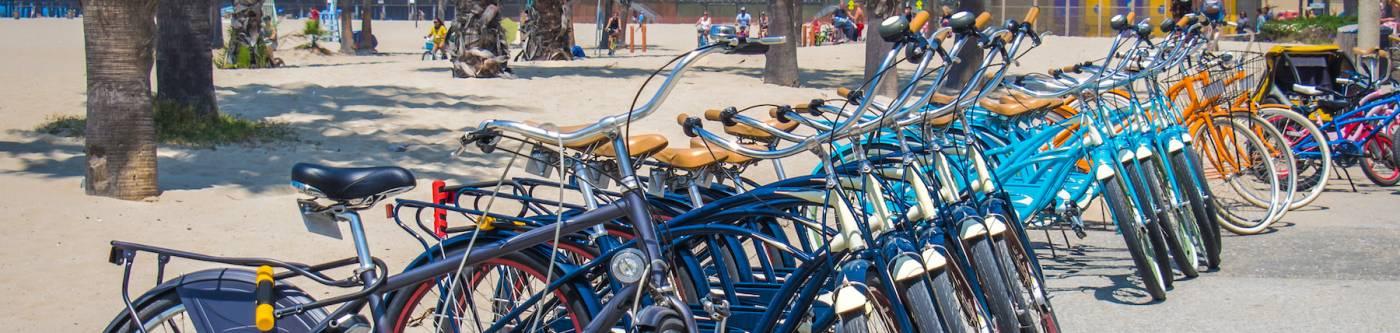 Beach Cruiser Bike Rentals